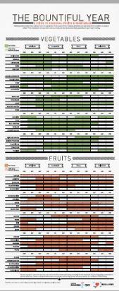Bountiful Year-infographic