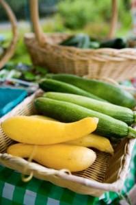 Summer Squash and Zucchini
